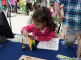 <h5>Party for the Planet - Regional Recycling Events - Kids Activities</h5><p>																																		</p>