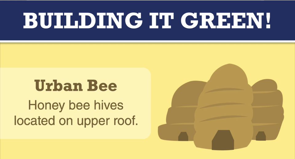Green Building - image9_regional-recycling-urban-bees
