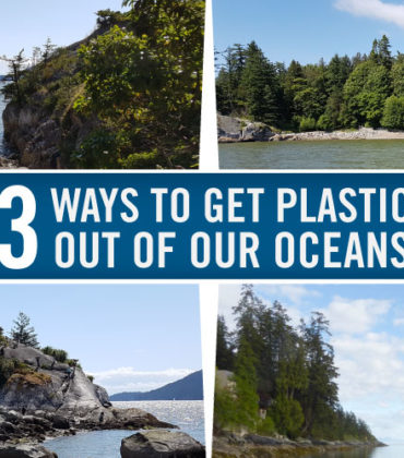 3 Ways to Get Plastic out of our Oceans #beachcleanup